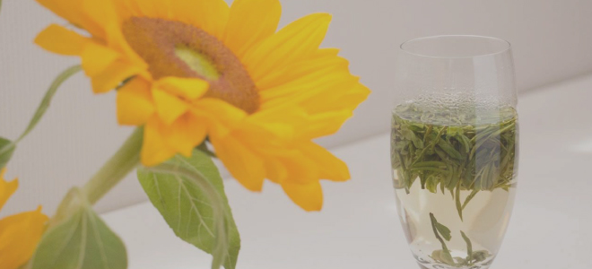 緑茶アイキャッチ